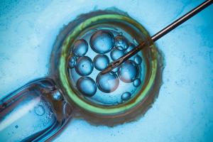 nace-my-fertile-el-programa-de-preservacion-de-la-fertilidad-de-gine