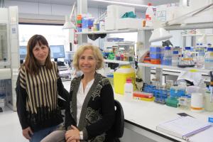 los-nutrientes-que-alimentan-las-neuronas-la-proteina-cpt1c-clave-p