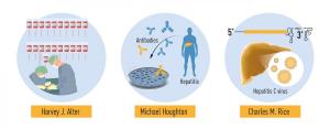 hepatitis-c-una-amenaza-global-para-la-salud