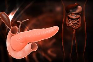 la-metilacion-del-adn-dicta-la-agresividad-del-cancer-de-pancreas