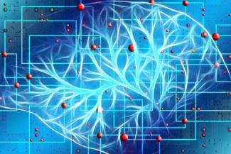 hallan-alteraciones-epigeneticas-en-el-cerebro-de-pacientes-con-trast