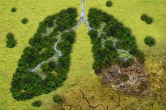 el-cambo-climatico-es-responsable-de-250000-muertes-al-ano