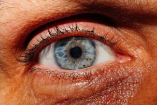 una-coalicion-internacional-de-investigadores-oculares-utiliza-ia-par