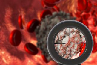 un-componente-del-colesterol-induce-la-produccion-de-vesiculas-que-p
