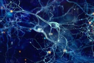 la-efectividad-de-las-terapias-del-empipelineem-de-roche-en-neuro