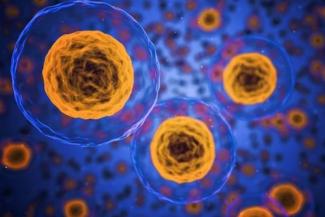 investigan-el-nivel-de-agresividad-de-las-celulas-cancerigenas