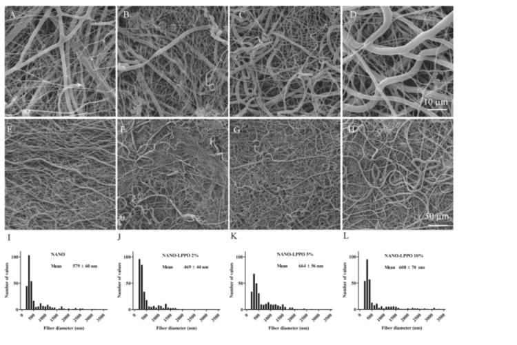 contrarrestar-las-infecciones-cutaneas-con-un-nanomaterial