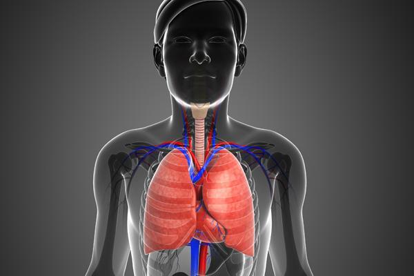 un activador natural de la senescencia celular podra ser la clave en la cura del cncer de pulmn