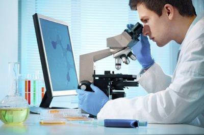 artilisinas para combatir a los patgenos gramnegativos multiresistentes