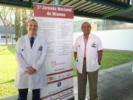 barcelona acoge la ii jornada nacional de miomas
