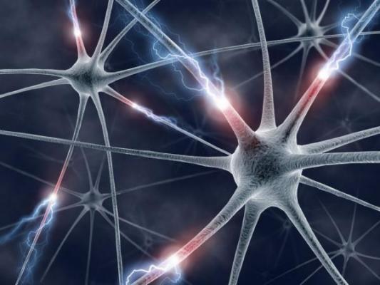 maacutes cerca de encontrar el tratamiento para la esclerosis muacuteltiple