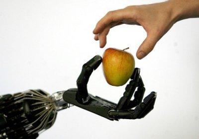 cientficos de la universidad de chicago sientan las bases de la creacin de prtesis de manos sensibles al tacto