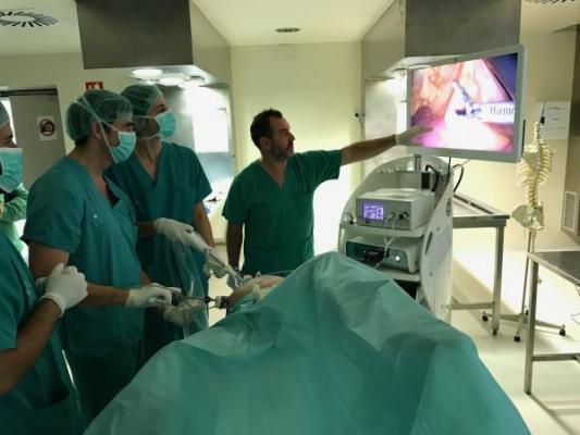 el cliacutenico de valencia forma a especialistas en cirugiacutea de la obesidad y cirugiacutea colorrectal avanzada por laparoscopia