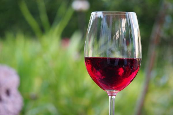 consumir vino tinto antes de fumar posible medida preventiva de dantildeos vasculares a corto plazo