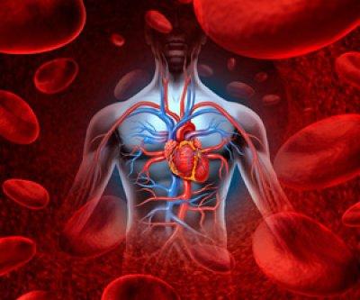 la coq10 reduce casi a la mitad la mortalidad en pacientes con insuficiencia cardiaca cronica
