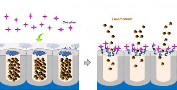 crean nanodispositiv