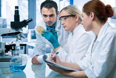 descubren por qu las clulas tumorales pueden crecer en hipoxia