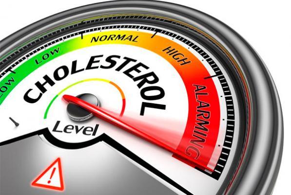 la dieta mediterraacutenea mejora la funcioacuten del colesterol hdl en los individuos de alto riesgo cardiovascular