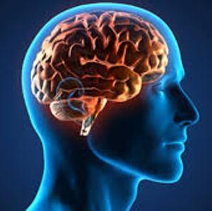 la enfermedad de alzheimer se desarrolla de forma distinta en pacientes con siacutendrome de down