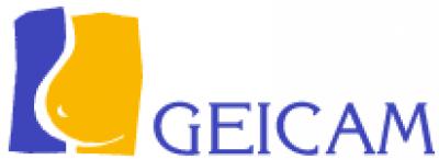 estudio pionero de geicam para un tratamiento en pacientes con cncer de mama metastsico her2 positivo
