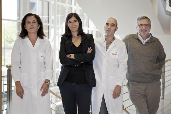 descubren un gen mutado en familias con muacuteltiples tumores incluido el angiosarcoma cardiaco