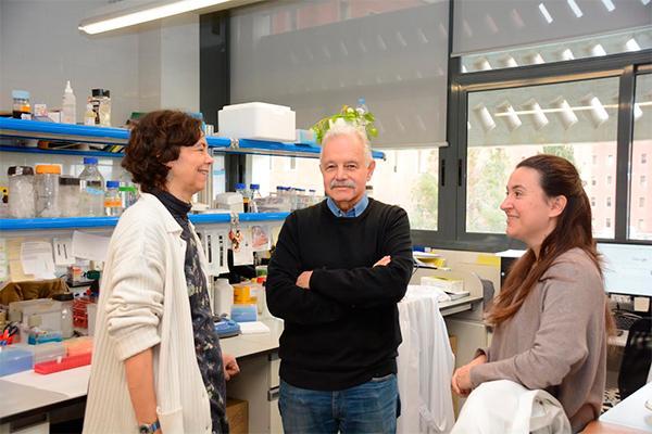 la ub halla un gen causante del siacutendrome de opitz c en la uacutenica persona diagnosticada en cataluntildea