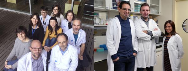 dos hospitales espantildeoles colaboran en el mayor estudio genoacutemico internacional sobre el ictus