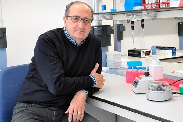 identifican las bacterias en humanos maacutes afectadas por enfermedades y medicamentos