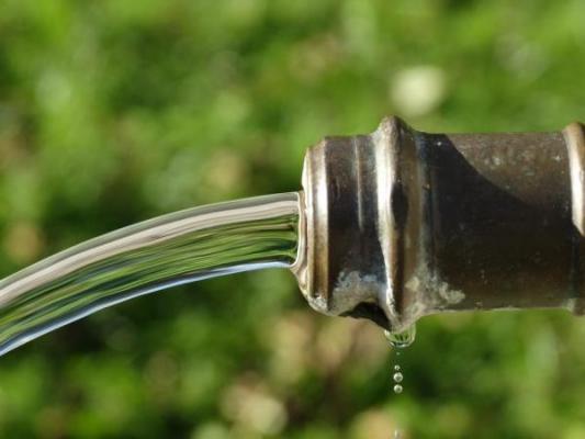 la ingesta de nitrato en el agua podriacutea estar asociada con el riesgo de caacutencer colorrectal