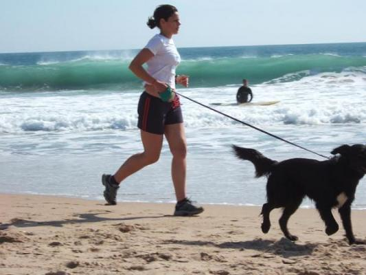 el jogging ligero ms eficaz que el moderado o el rpido en la prevencin de la mortalidad