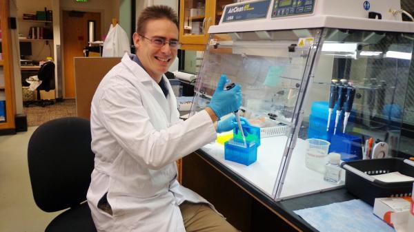 lectura del microbioma humano a alta velocidad