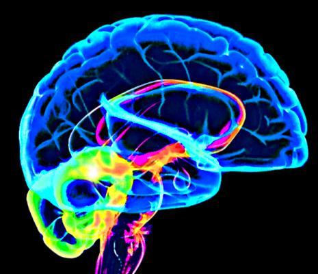 mantener las emociones bajo control gracias a la neuroretroalimentacioacuten