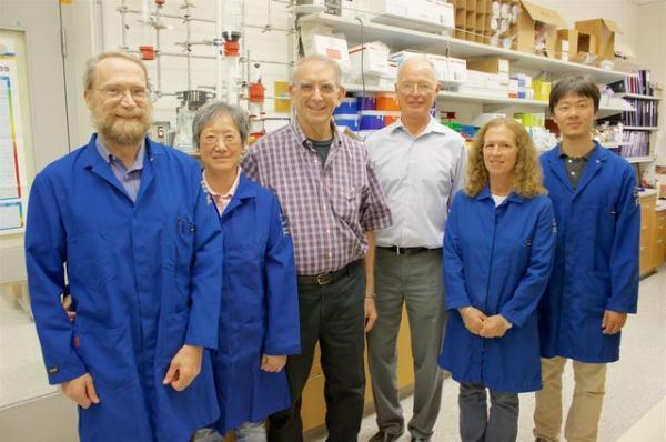 un meacutetodo de entrega nanotecnoloacutegico mejoraraacute los tratamientos antibioacuteticos