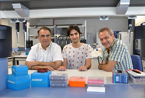 miden la efectividad de los faacutermacos para hepatits c causada por diferentes genotipos del virus