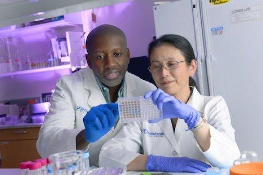nanoformulacioacuten