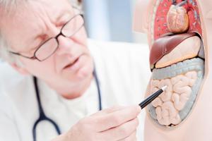nueva plataforma online gratuita para mejorar los conocimientos sobre la enfermedad inflamatoria intestinal