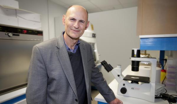 una nueva tecnologiacutea de edicioacuten de genes restaura parcialmente la visioacuten en animales ciegos