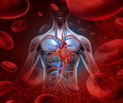 Nuevo avance en la creación de vasos sanguíneos artificiales