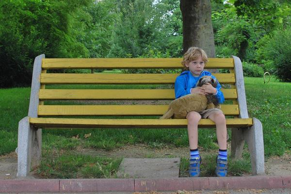 es posible que el autismo comience en una fase inicial del desarrollo cerebral