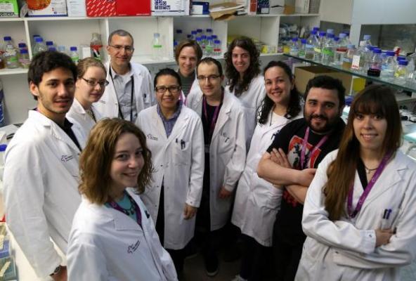 el gen ppox nueva diana terapeacuteutica contra el caacutencer colorrectal
