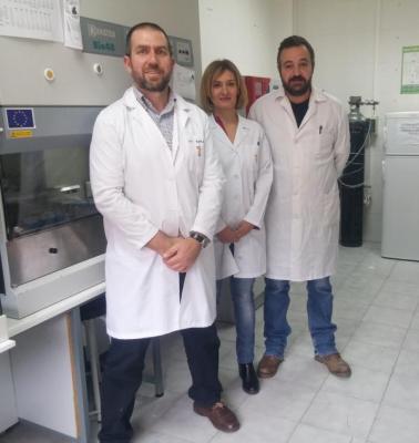 el proceso de autofagia celular influye en la calidad del semen