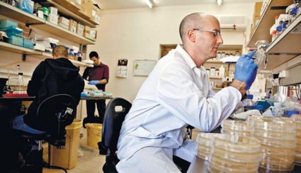 programan el adn bacteriano para revertir la resistencia a los antibiticos