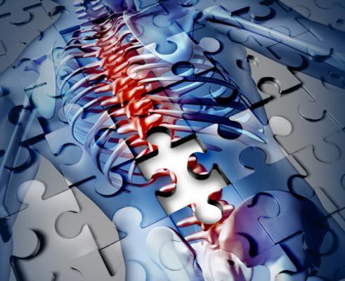 protocolo de la omc y sanidad para abordar la vejiga neurogena en el lesionado medular