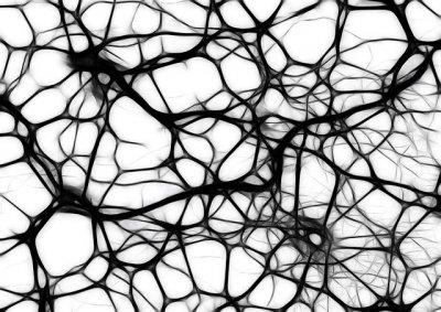 remisin sostenida en la esclerosis mltiple con una nueva combinacin teraputica