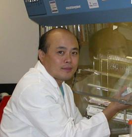 un tratamiento experimental podriacutea ser uacutetil en la esclerosis muacuteltiple