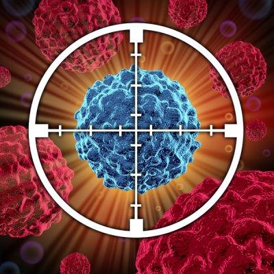 validada una nueva diana teraputica para la inmunoterapia del cncer