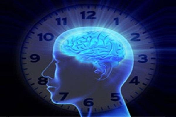 una variante geneacutetica acelera el envejecimiento cerebral hasta 12 antildeos