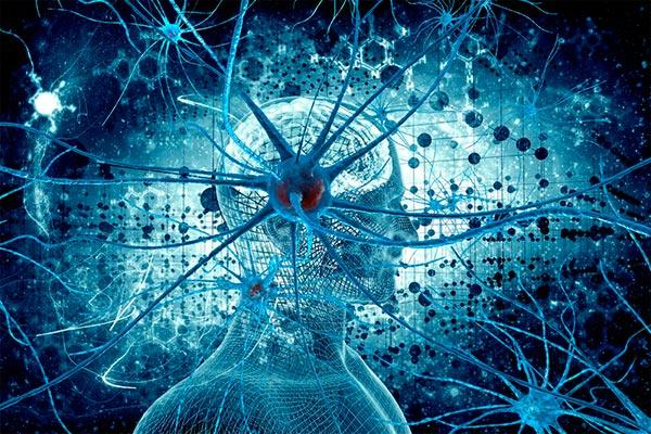 dos variantes geneacuteticas contribuyen de manera sineacutergica al riesgo de esclerosis muacuteltiple